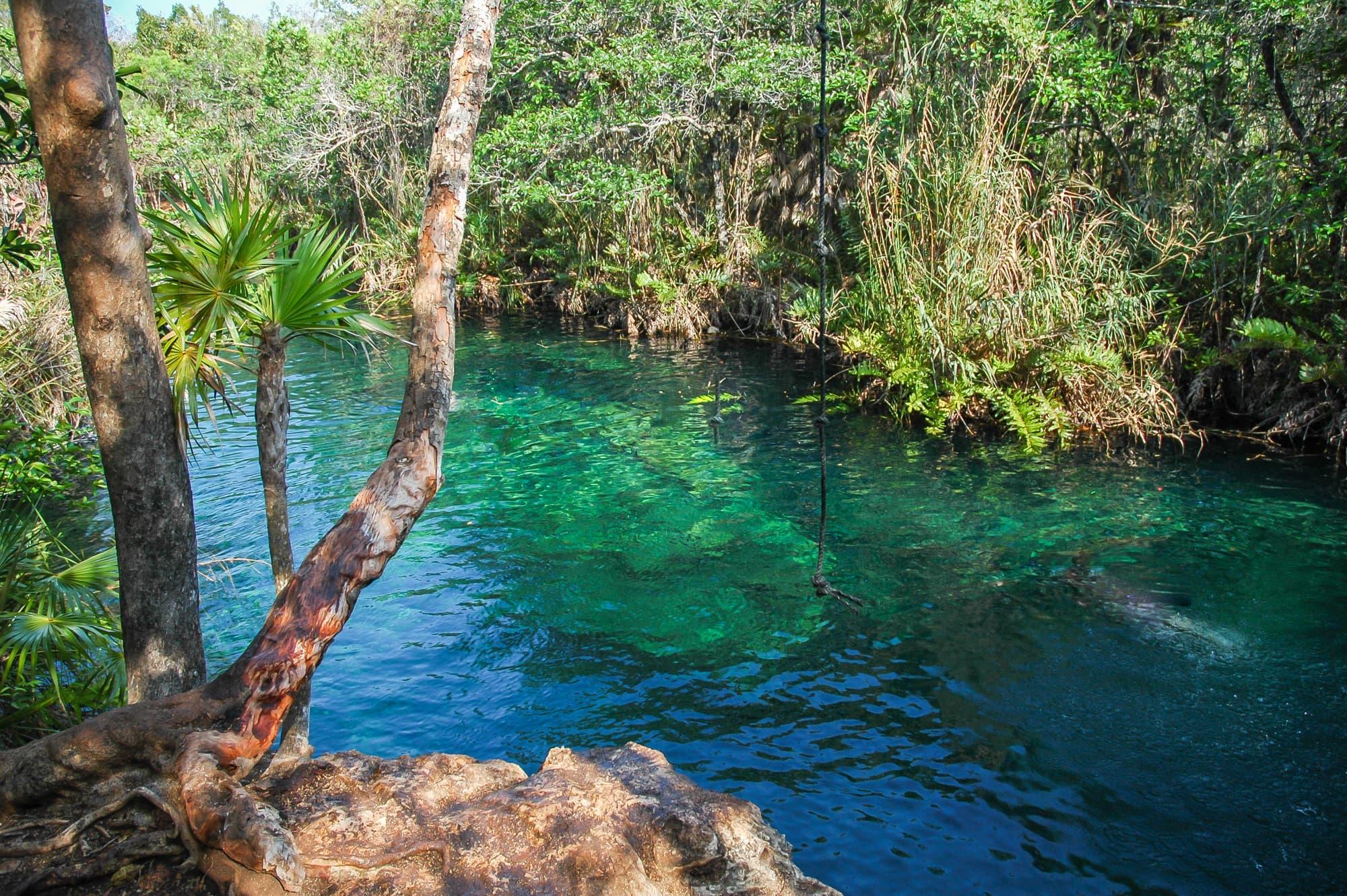 cenotes (1 of 7)