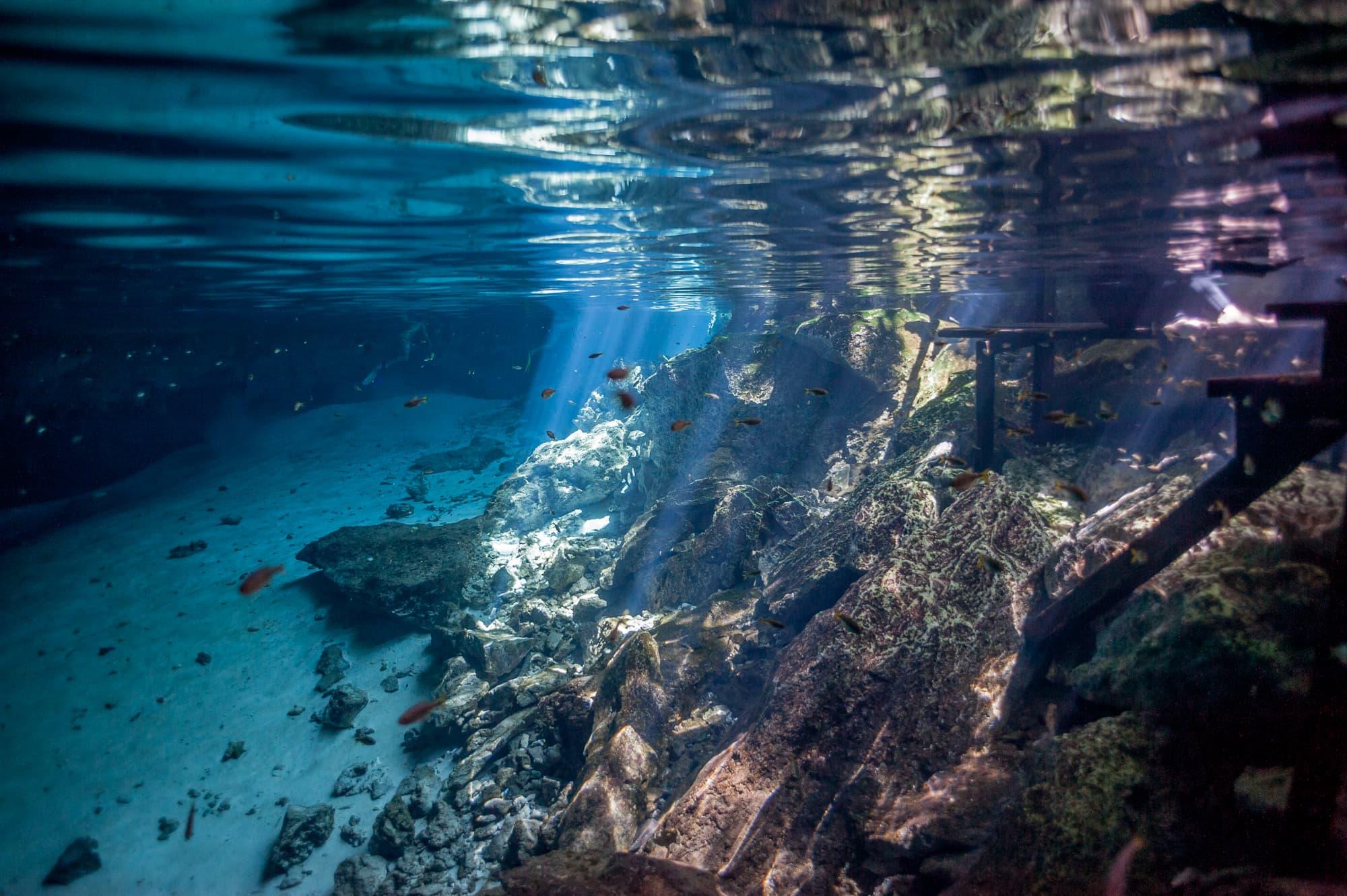 cenotes (5 of 7)