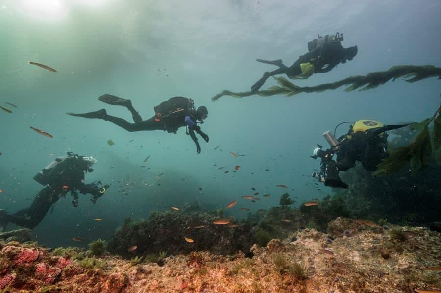 diving-tulum